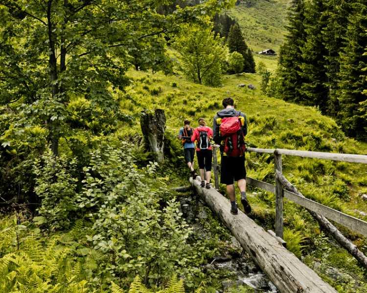 Walking in Ticino