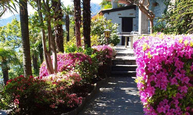 Hotel La Rocca - viale